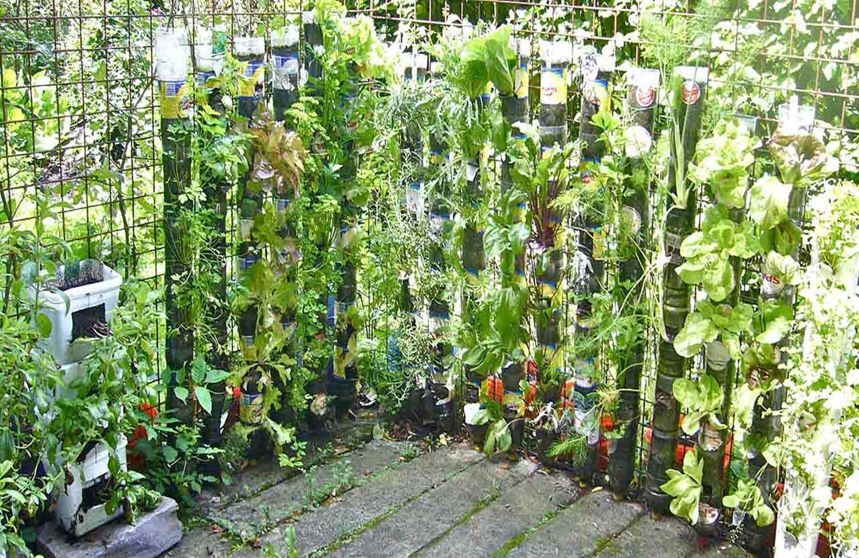 Flores c mo hacer un huerto vertical paso a paso for Imagenes del huerto vertical