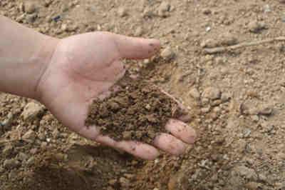 como utilizar fertilizantes