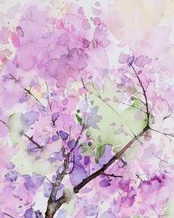 enmarcar laminas de flores