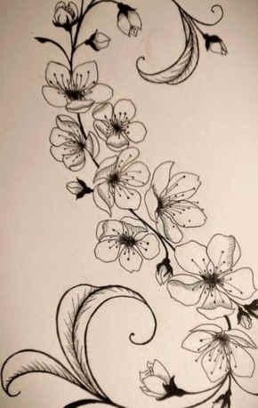 Imágenes de Flor de Cerezo y significado