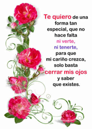 flores y rosas hermosas con frases