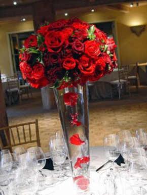fotos de rosas rojas bonitas