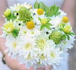 imagenes de flores de margaritas en ramo