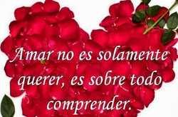 Imágenes De Rosas Con Frases De Amor Para Enamorar