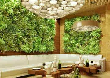 jardines verticales bellos 7