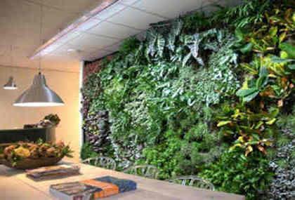 jardines verticales bellos