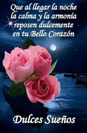 rosas con frases buenas noches