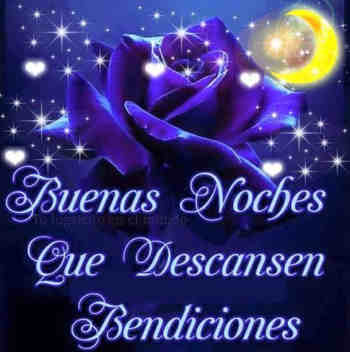 rosas hermosas con frases noches